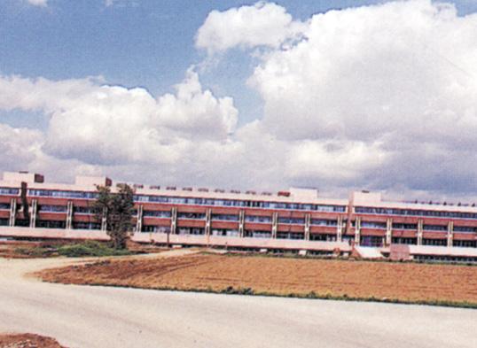Università di Udine pendenze delle terrazze